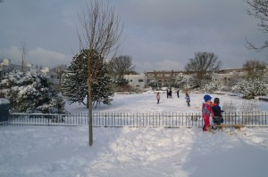 sneeuw-papaverhof-2013